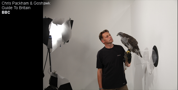 Chris Packham & Goshawk_Guide To Britain_BBC